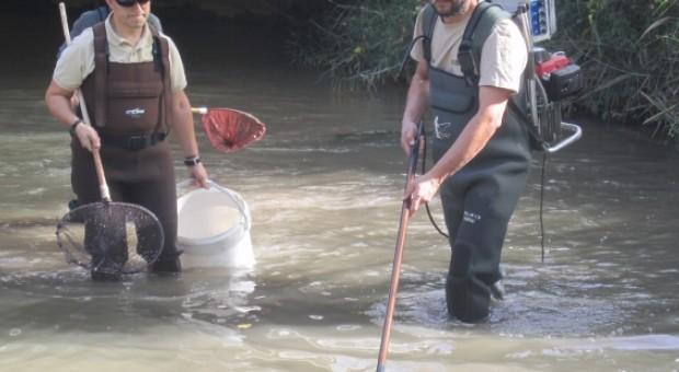 pesca eléctrica Jalón
