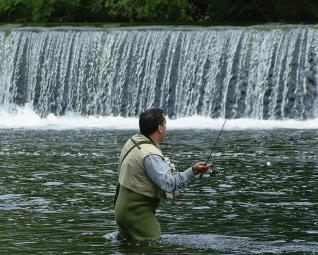 Pescador del Ulla